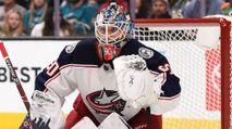 DraftKings NHL Lineup Advice: Thursday 1/16 photo