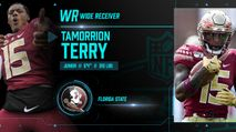 2021 NFL Draft Profile: WR Tamorrion Terry photo