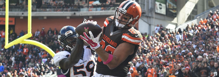 There are many different factors that could contribute to Gary Barnidge's likely target regression
