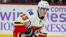 DraftKings NHL Lineup Advice: Thursday (11/30) photo