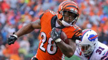 Fantasy Football RB Leaders: Four-Year Rank Trends photo